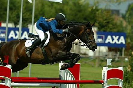 "Valentino in his ""real life"" as a Grand Prix jumper"
