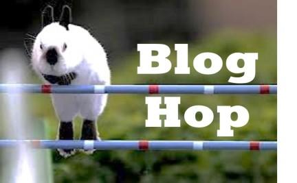 bloghopfbpony