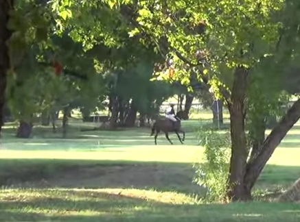 galloping