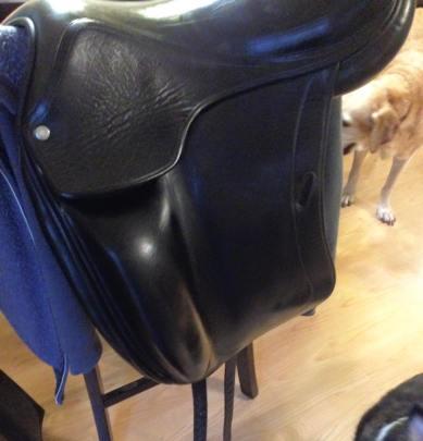 saddlecloseup