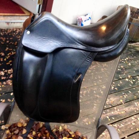 saddleconditioned