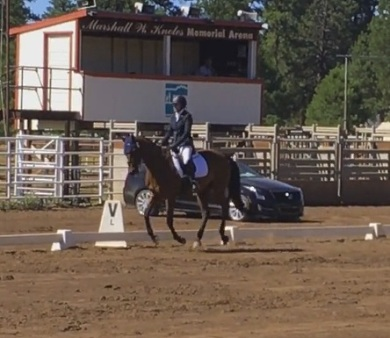 cocodressage3