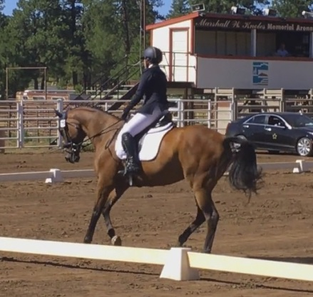 cocodressage5