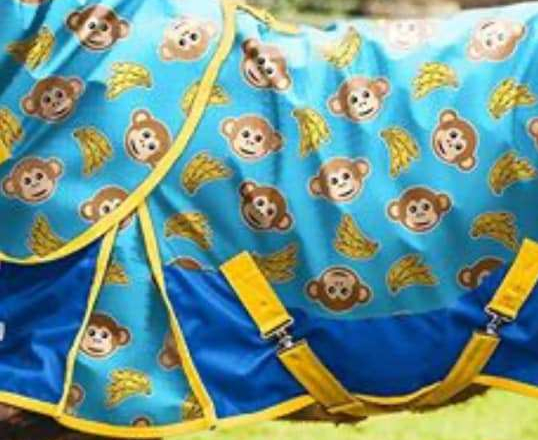 monkeyblanket