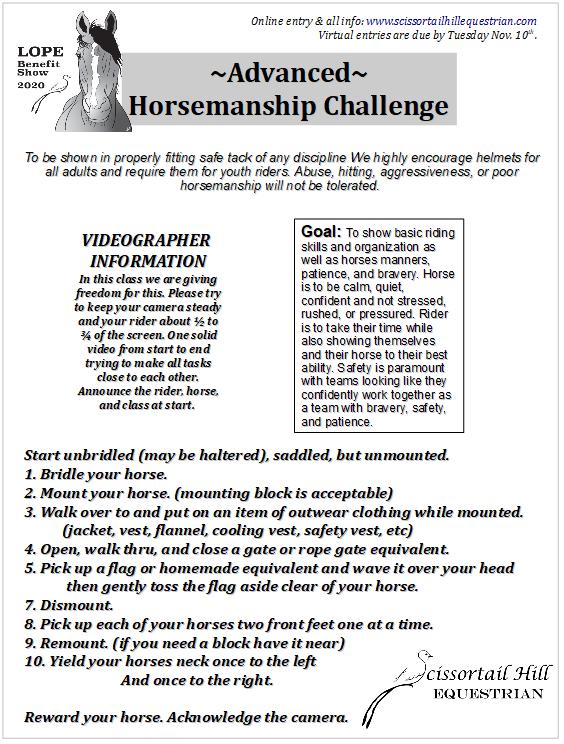 Desafio de Equitação 1
