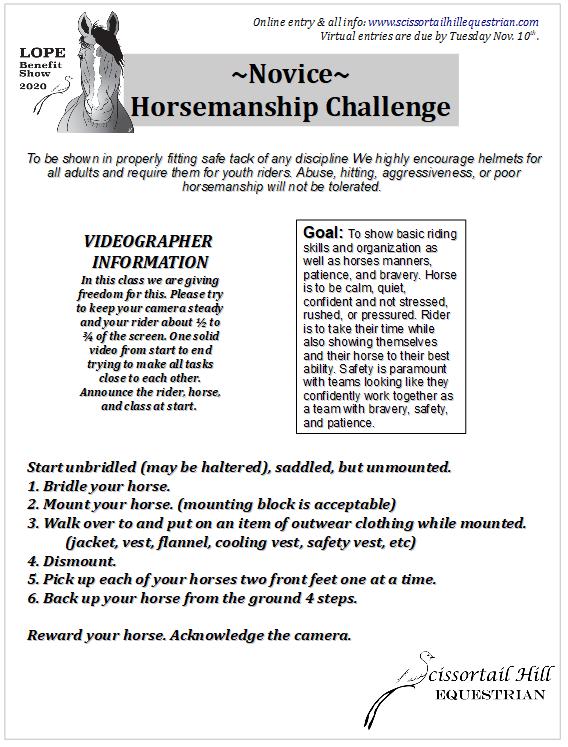 Desafio de Equitação 2